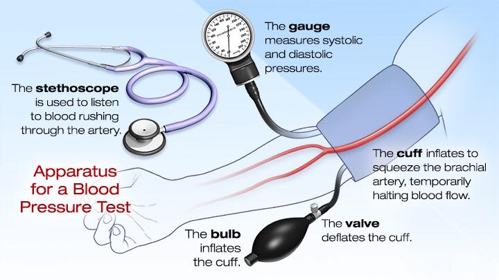 Apparatus For A Blood Pressure Test
